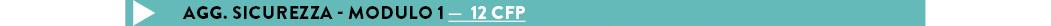 Agg. Sicurezza - modulo 1 —  12 CFP