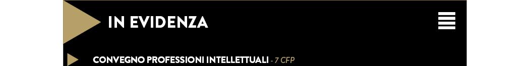 CONVEGNO PROFESSIONI INTELLETTUALI - 7 CFP