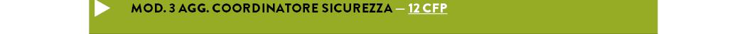 MOD. 3 AGG. COORDINATORE SICUREZZA — 12 cfp