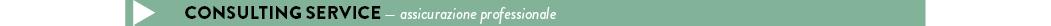 consulting service — assicurazione professionale