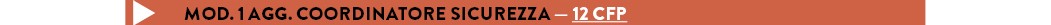 MOD. 1 AGG. COORDINATORE SICUREZZA — 12 cfp